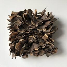 Flow – 2019 | Jacaranda tree pods, acrylic medium, wood glue on wood panel | 13 x 13 in
